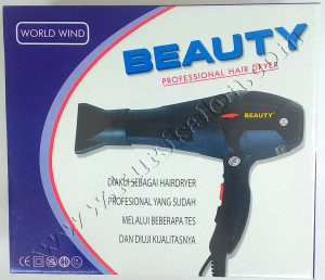 Beauty Professional Hair Dryer World Wind